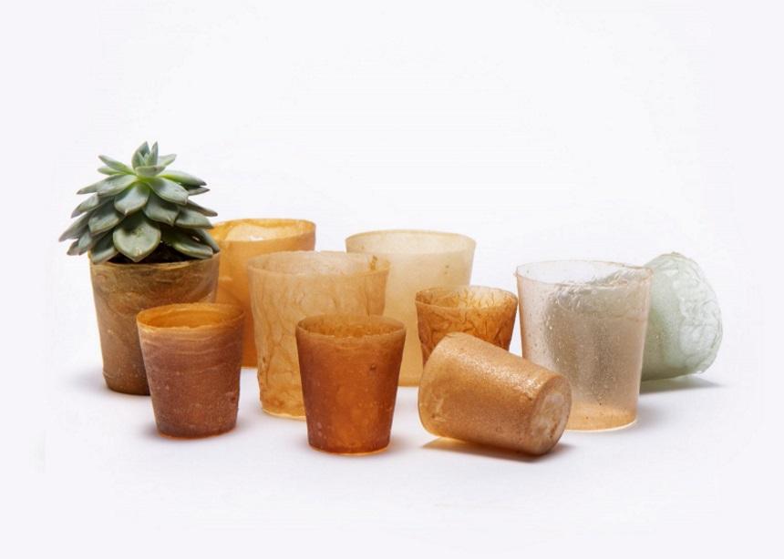 Shellworks: Ένα νέο οργανικό υλικό έρχεται να αντικαταστήσει το πλαστικό | tlife.gr