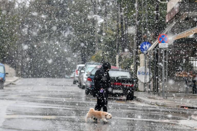 Καιρός – Καλλιάνος: Ανατροπή! Αλλάζουν οι προβλέψεις για τον ιστορικό χιονιά! | tlife.gr