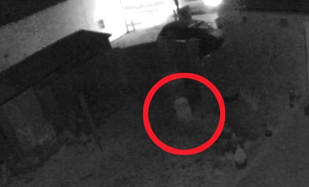 Σοκαριστικό βίντεο: Οικογένεια τρομοκρατείται όταν βλέπει σε κάμερα ασφαλείας στον κήπο της ένα παιδί φάντασμα! | tlife.gr