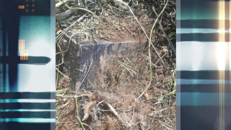 Γ΄ Νεκροταφείο: Την έθαψαν όρθια σε πλαστικό φέρετρο! | tlife.gr