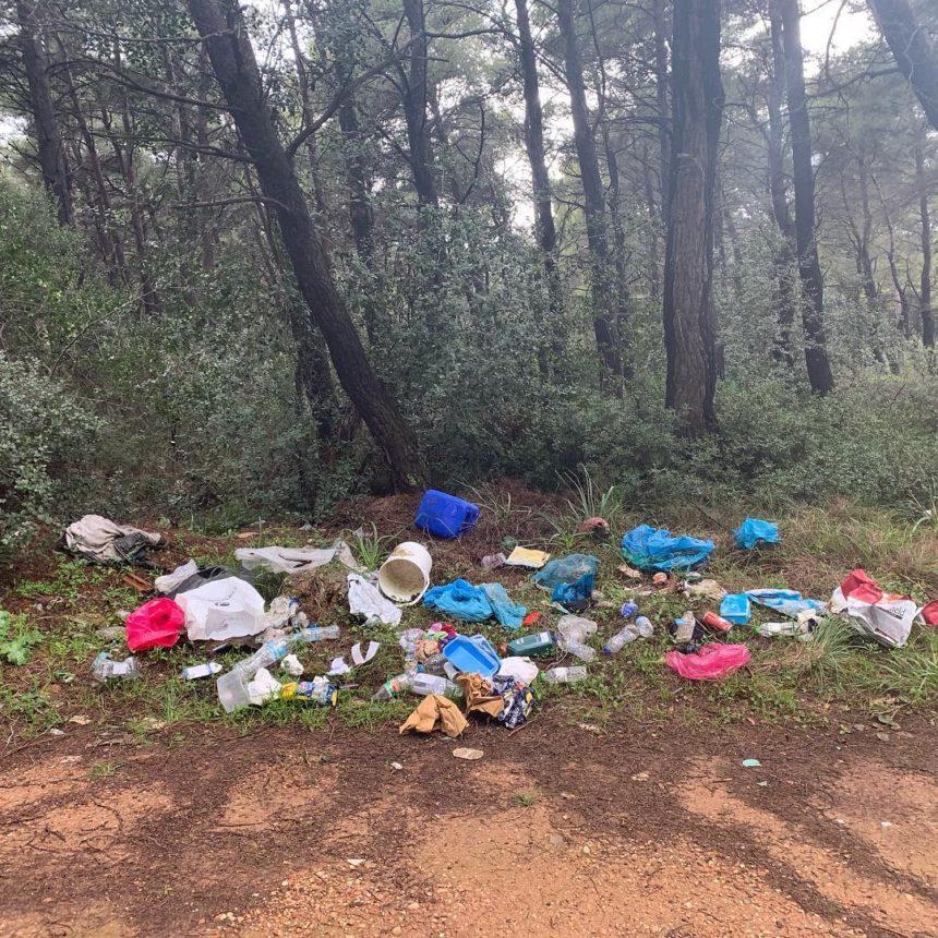 Διάσημος Έλληνας ηθοποιός και συγγραφέας καθάρισε το δάσος στη Νέα Ερυθραία! Φωτογραφίες | tlife.gr