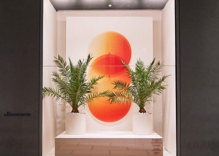 Ο εντυπωσιακός φυσικός κόσμος της Sabine Marcelis στο φετινό Milan Design Week | tlife.gr