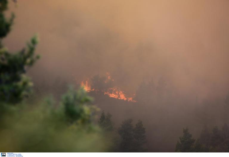 Μεγάλος κίνδυνος πυρκαγιάς σήμερα σε Αττική και Εύβοια
