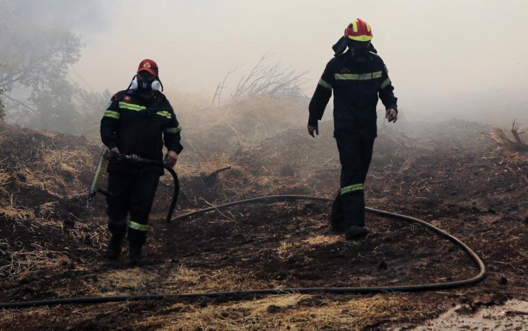 Εύβοια: Τα στοιχεία που δείχνουν… εμπρησμό! Τεράστια η οικολογική καταστροφή   tlife.gr