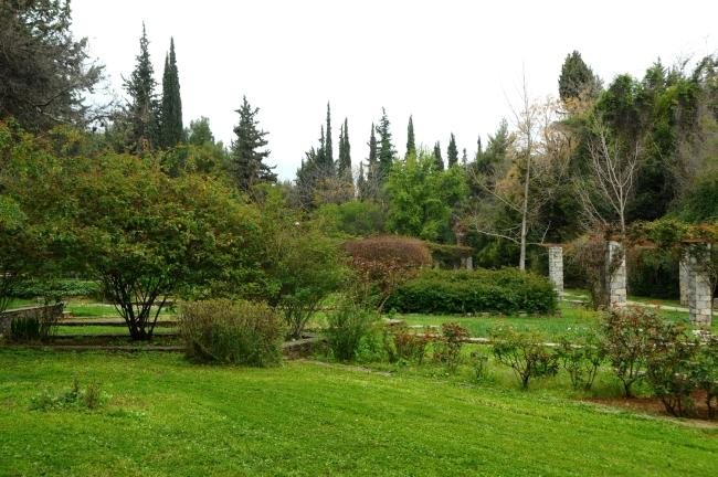 Αυτός ο παράδεισος είναι 8 χιλιόμετρα από το κέντρο της Αθήνας και ίσως δεν γνωρίζετε καν ότι υπάρχει! | tlife.gr