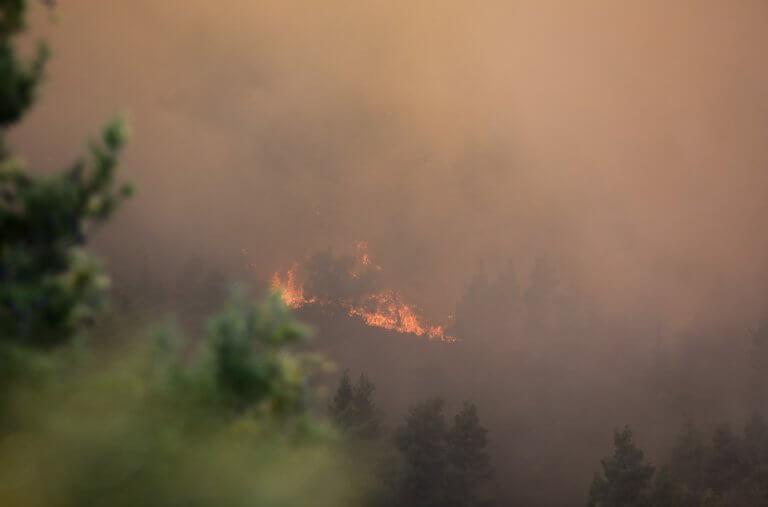 Υψηλός κίνδυνος πυρκαγιάς λόγω ζέστης και ανέμων – Συναγερμός σε όλη τη χώρα! | tlife.gr