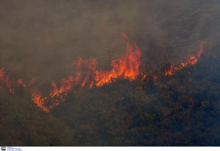 Σε εξέλιξη η μεγάλη φωτιά στην Εύβοια | tlife.gr