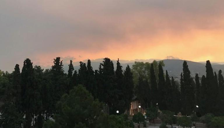 Δραματικές ώρες για την Εύβοια: Καίγεται το δάσος Natura!   tlife.gr