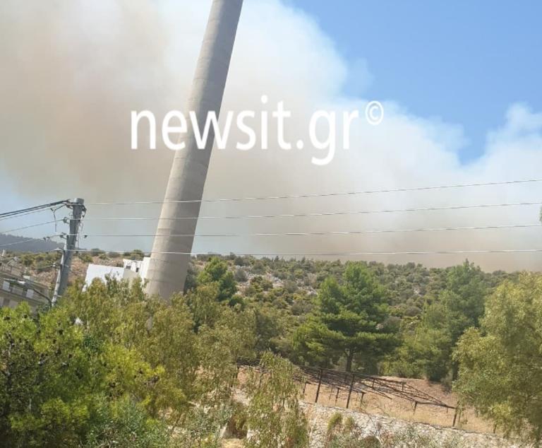 Μεγάλη φωτιά ξέσπασε στον Ασπρόπυργο | tlife.gr