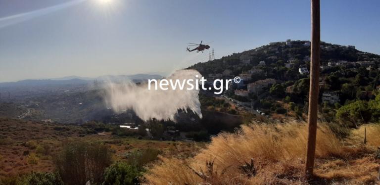 Φωτιά Πεντέλη: Διακοπή κυκλοφορίας στην οδό Δουκίσσης Πλακεντίας! | tlife.gr