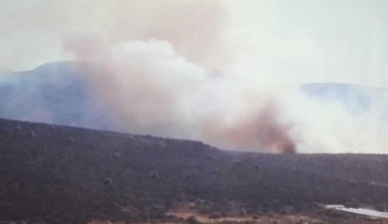 Μεγάλη φωτιά στον Μαραθώνα – Καίει δασική έκταση κοντά σε σπίτια | tlife.gr