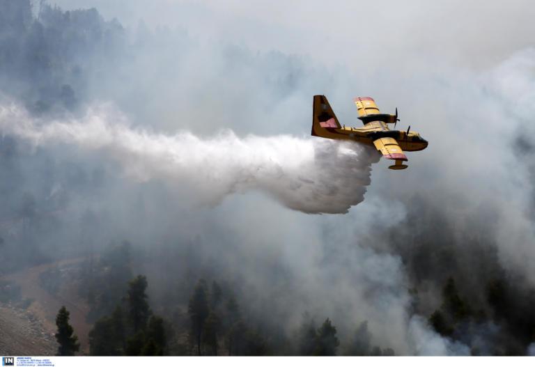 Απίστευτο! Πυροσβεστικό αεροπλάνο έλουσε αγρότη με τόνους νερού!   tlife.gr