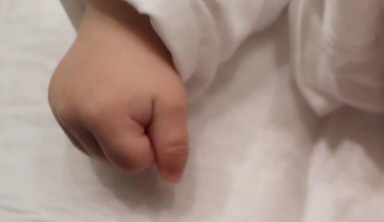 Tραγωδία στα Γλυκά Νέρα: Σκυλί ράτσας ροτβάιλερ κατασπάραξε μωρό 2 μηνών | tlife.gr