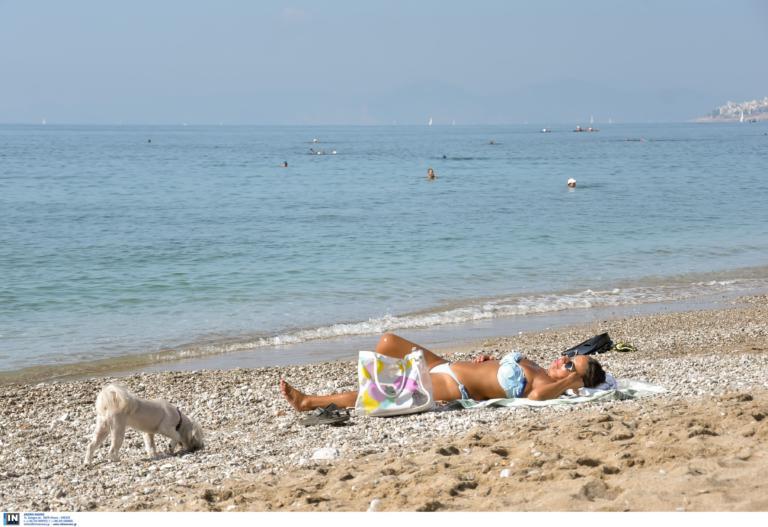 Καιρός: Πάμε… παραλία! Αίθριος καιρός και αύριο Τετάρτη | tlife.gr