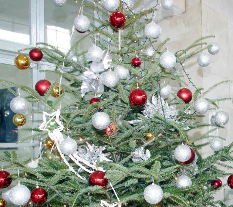 Κοίταξε στο χριστουγεννιάτικο δέντρο και αυτό που είδε δεν ήταν μπάλα!