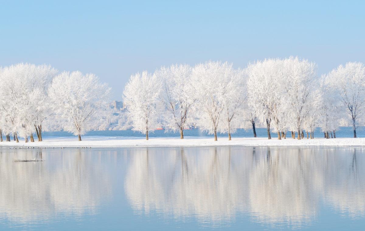 Μηνιαίες αστρολογικές προβλέψεις: Πώς θα είναι ο Ιανουάριος σύμφωνα με το ζώδιό σου   tlife.gr