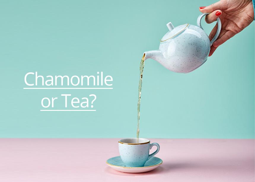 Χαμομήλι ή τσάι; Τι προσφέρει το καθένα στον οργανισμό μας και πόσο βοηθούν στο αδυνάτισμα;   tlife.gr