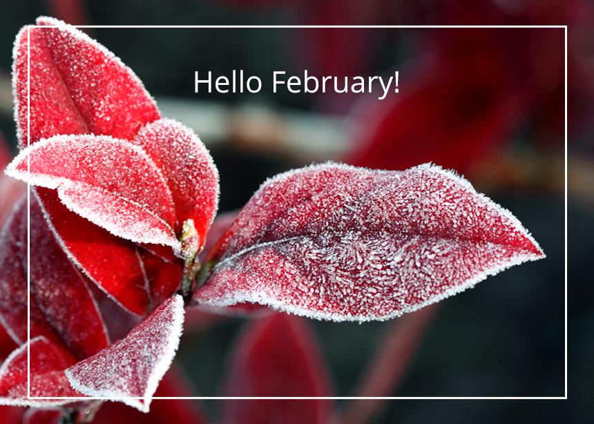 Μηνιαίες αστρολογικές προβλέψεις: Πώς θα είναι ο Φεβρουάριος σύμφωνα με το ζώδιό σου | tlife.gr