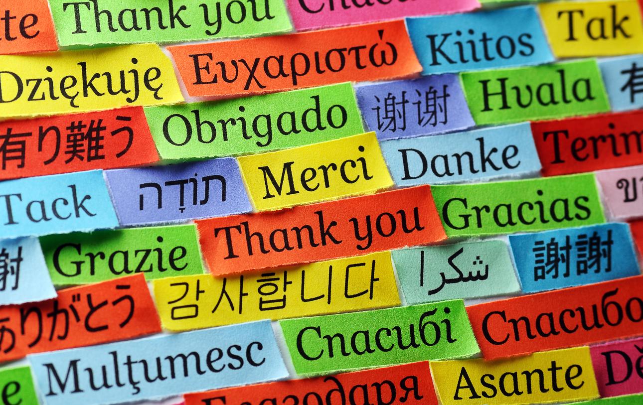 Η ευγνωμοσύνη απομακρύνει την τοξικότητα και χαρίζει ευεξία