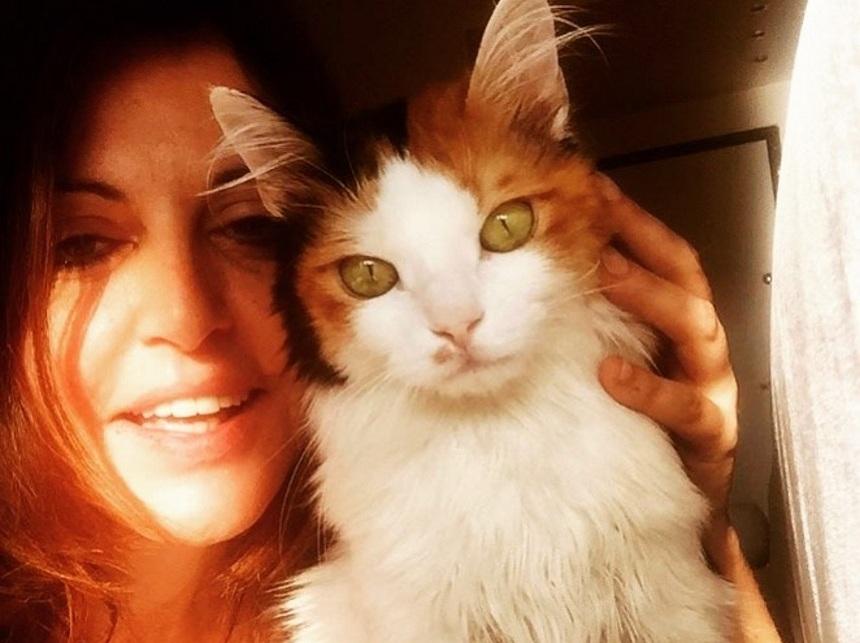 Αλεξάνδρα Παλαιολόγου: Υιοθέτησε αδέσποτο γατάκι μετά το χαμό της «Λιλίκας»! [pic]   tlife.gr