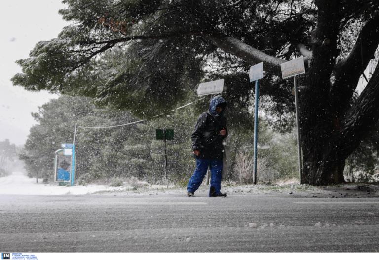 Καιρός: Στην κατάψυξη! Χιόνια, πολικές θερμοκρασίες και θυελλώδεις άνεμοι | tlife.gr