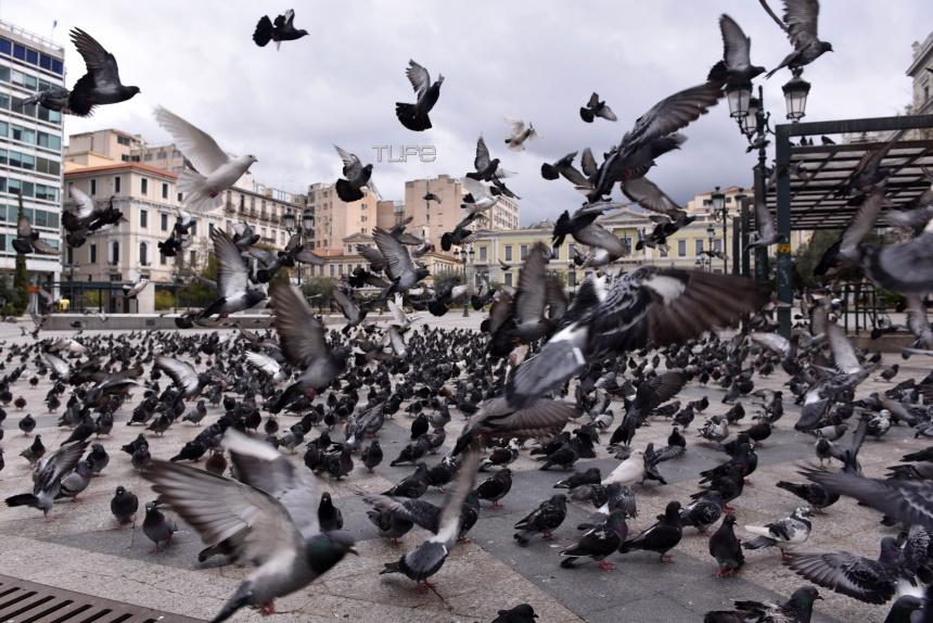 14 + 1 φωτογραφίες από την απόκοσμη Αθήνα! Μια πόλη άγνωστη πλέον για μας – Φωτορεπορτάζ   tlife.gr
