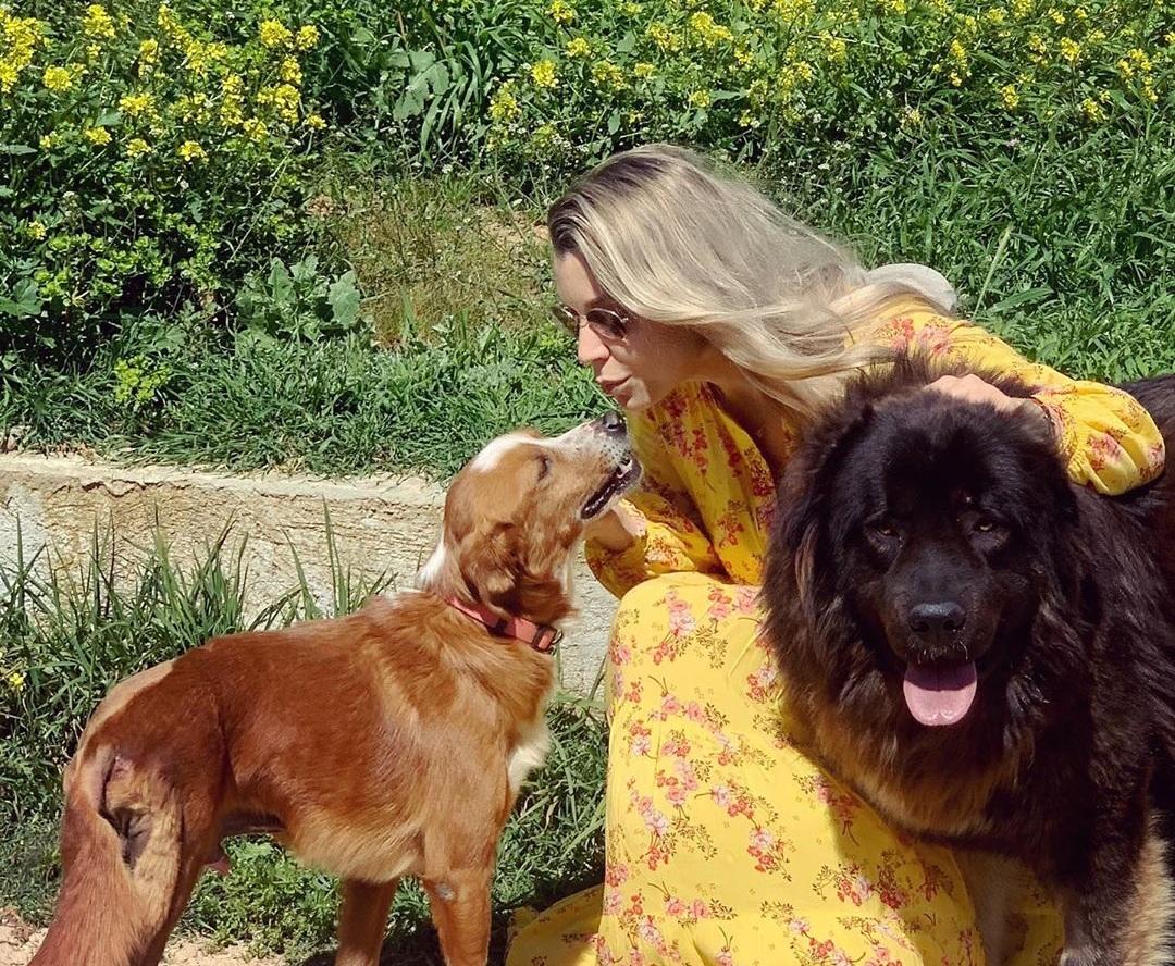 Kατρίνα Τσάνταλη: Ραγίζει καρδιές το μήνυμα της σ΄αυτόν που πυροβόλησε τον σκύλο που προσπάθησε μάταια να σώσει! [pics]