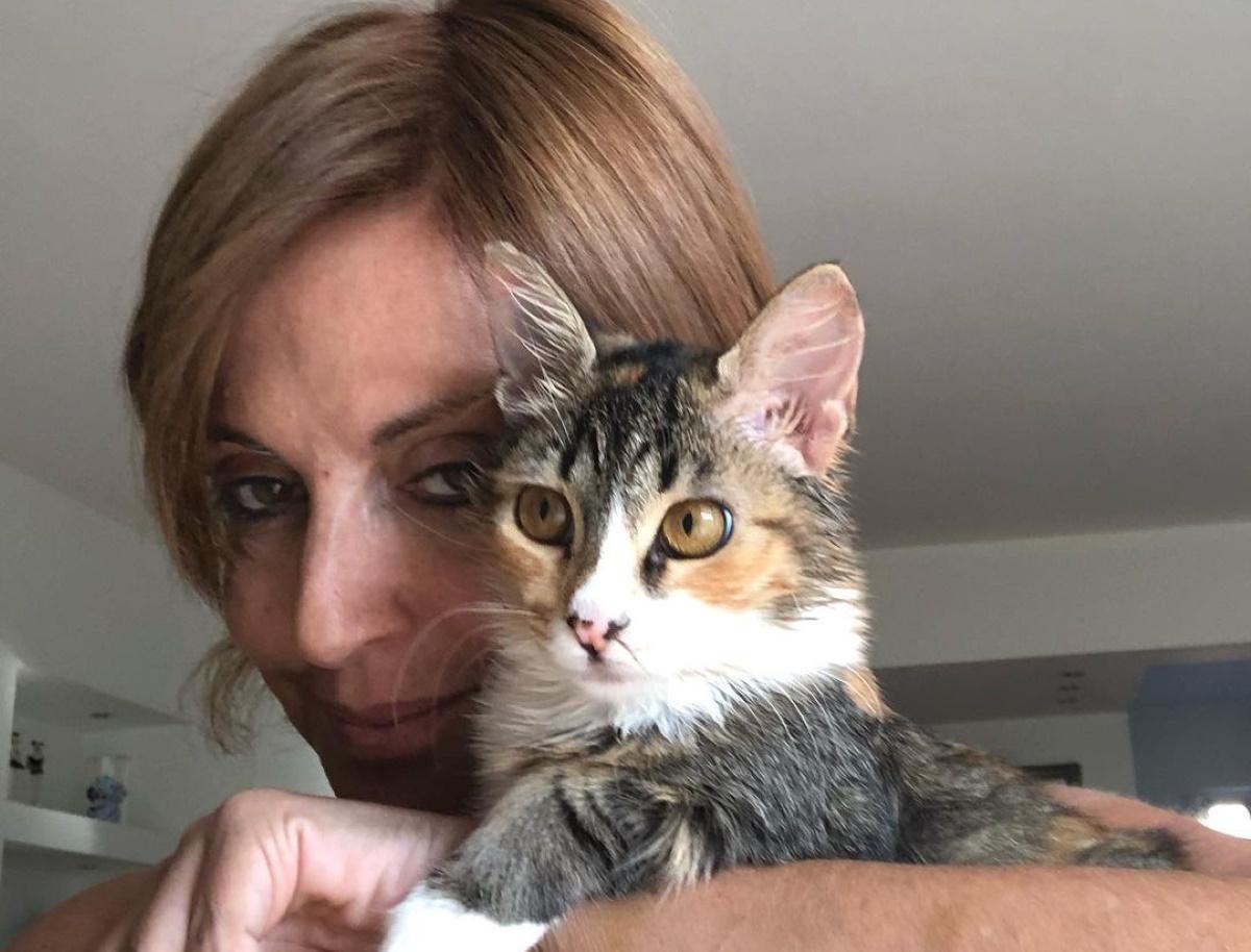 """Αλεξάνδρα Παλαιολόγου: Σοκάρει η καταγγελία της – """"Σκοτώνουν live γατάκια, κλαίω με λυγμούς"""" (βίντεο)"""