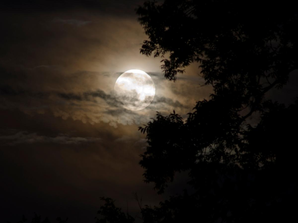 """Πανσέληνος – Μερική Σεληνιακή Έκλειψη: Πώς μας επηρεάζει το """"εκρηκτικό"""" αυτό φαινόμενο;"""
