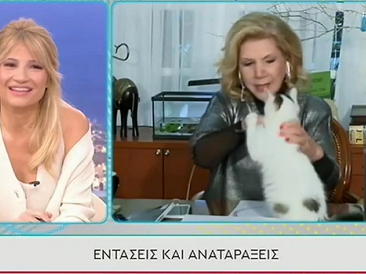 Λίτσα Πατέρα: Απίστευτο σκηνικό στο Πρωινό – Της επιτέθηκε η γάτα